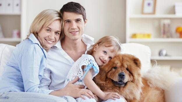 Wills & Trusts dog-young-family Direct Wills Bradford